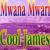 Mwana Mwari by Cool James