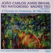 Heitor Villa-Lobos: A Floresta Do Amazonas by João Carlos Assis Brasil