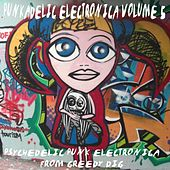 Punkadelic Electronica, Vol. 5 (Psychedelic Punk Electronica) von Various Artists
