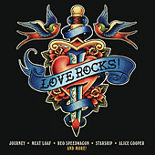 Love Rocks! de Various Artists