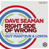 Right Side of Wrong by Dave Seaman