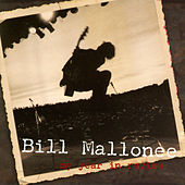 My Year In Review by Bill Mallonee