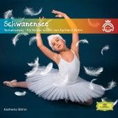 Schwanensee Tschaikowsky - Für Kinder erzählt von Karlheinz Böhm by Petra Schmidt-Decker