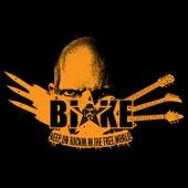 Rockin' in the Free World by Blake