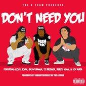 Don't Need You (feat. Kool John, Show Banga, TJ Bridges, Derek King & Lex Aura) - Single by The A-Team