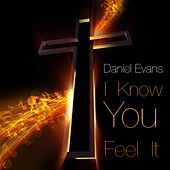 I Know You Feel It by Daniel Evans