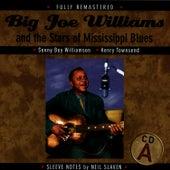 Big Joe Williams And The Stars Of Mississippi Blues de Big Joe Williams