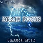 Studying Brain Focus by Various Artists