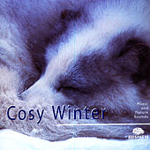 Cosy Winter by Relaxation - Ambient