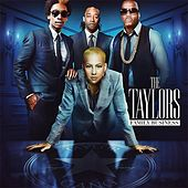 The Taylors Family Business von Various Artists