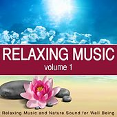 Relaxing Music, Vol. 1 (Relaxing Music and Nature Sounds for Well Being) de Various Artists