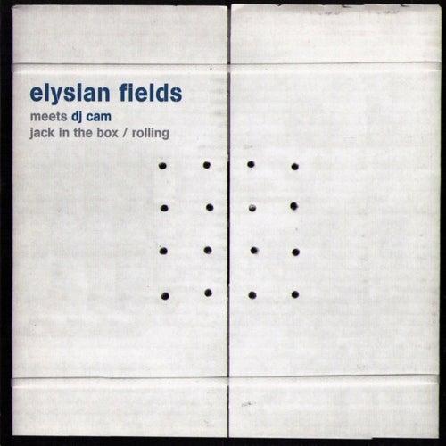 Elysian Fields Meets Dj Cam by Elysian Fields (Rock)