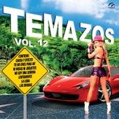 Temazos, Vol. 12 von Various Artists