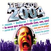 Temazos 2004 von Various Artists