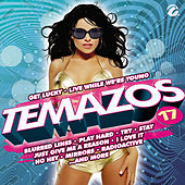 Temazos, Vol. 17 by Various Artists