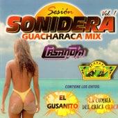Sesión Sonidera Guaracha, Vol. 1 by Various Artists