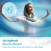 Miracles Abound: Meditations for Transformation de Jai-Jagdeesh