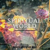 Spiritual World, Vol. 1 (Mix of Finest in Ambient & Relaxation) by Various Artists