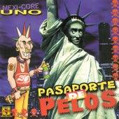 Pasaporte de Pelos, Vol. 1 von Various Artists