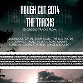 Rough Cut Records 2014 by Various Artists