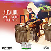Weh You Did Deh - Single von Alkaline
