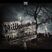 Willkommen im Niemandsland von Various Artists