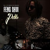 Pablo by Feng Shui