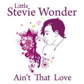Ain't That Love by Stevie Wonder