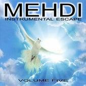 Instrumental Escape Volume 5 by Mehdi