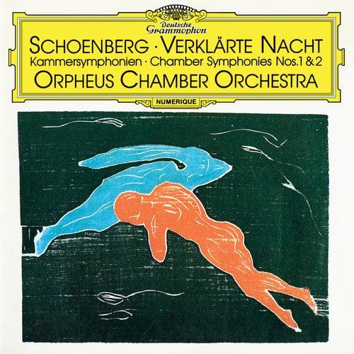 Schoenberg: Verklärte Nacht, Op. 4 / Chamber Symphonies Nos. 1 & 2 by Orpheus Chamber Orchestra