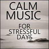 Calm Music for Stressful Days by Various Artists