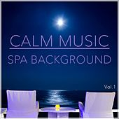 Calm Music by Various Artists