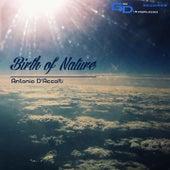Birth of Nature di Antonio D'accolti