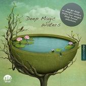 Deep Magic Waters, Vol. 9 by Various Artists