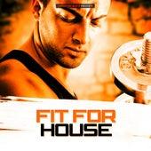 Fit for House de Various Artists