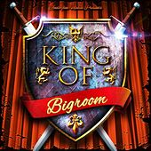King of Bigroom by Various Artists