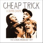 A Damn Shame (Live) by Cheap Trick