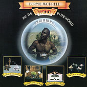 All the Woo in the World by Bernie Worrell
