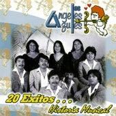 20 Exitos... Historia Musical de Los Angeles Azules
