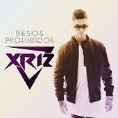 Besos prohibidos von Xriz