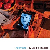 Fortune by Damon and Naomi
