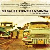 Mi Salsa Tiene Sandunga (My Salsa Has Sandunga) by Various Artists
