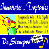 Inmortales... Tropicales de Siempre de Various Artists