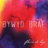 Bywyd Braf by The Fleur De Lys