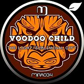 The Light/Subliminal Gift by Voodoo Child