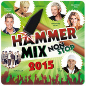 Hammer-Mix Non-Stop 2015 van Various Artists