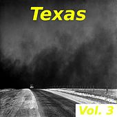Texas, Vol. 3 by Various Artists