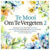 Te Mooi Om Te Vergeten Vol. 2 de Various Artists