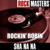 Rock Masters: Rockin' Robin von Sha Na Na
