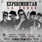 Experimentan La Perse (Remix) [feat. Daddy Yankee, Farruko, Gotay & Pusho] von Benny Benni
